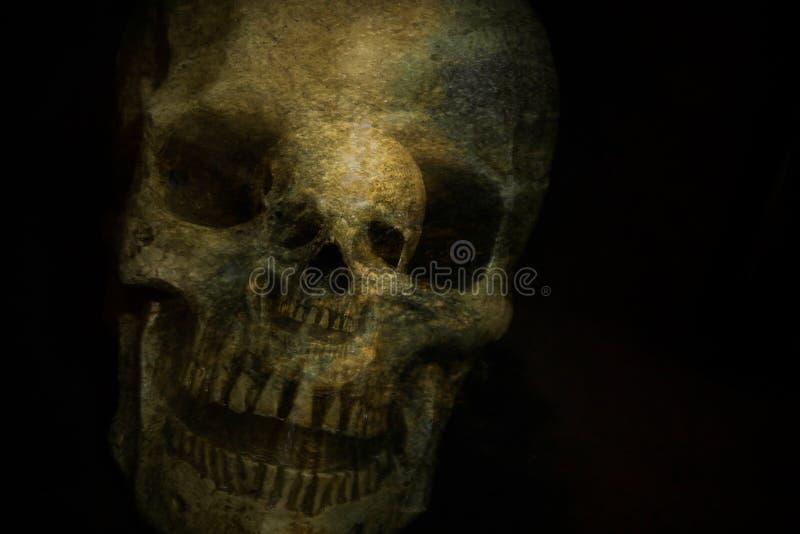 Cráneo del fantasma fotografía de archivo libre de regalías