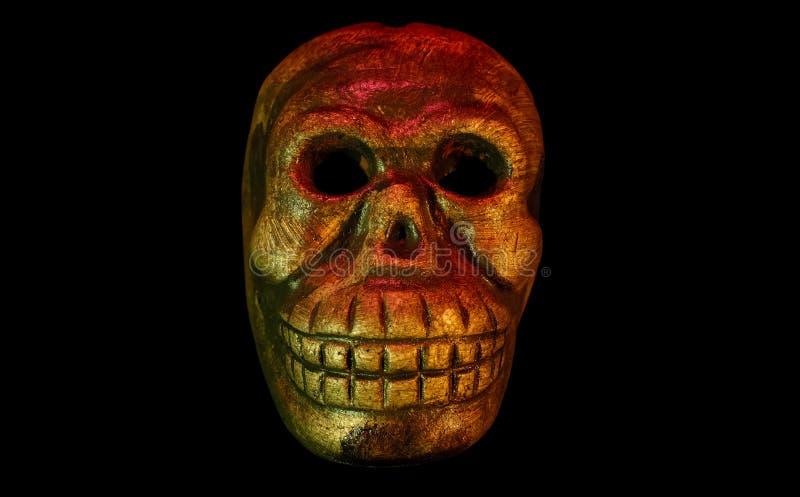 Download Cráneo del mono imagen de archivo. Imagen de halloween - 1282571
