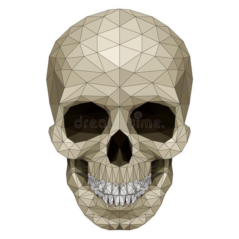 Cráneo del mosaico stock de ilustración