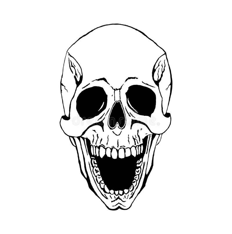 Cráneo del vector libre illustration