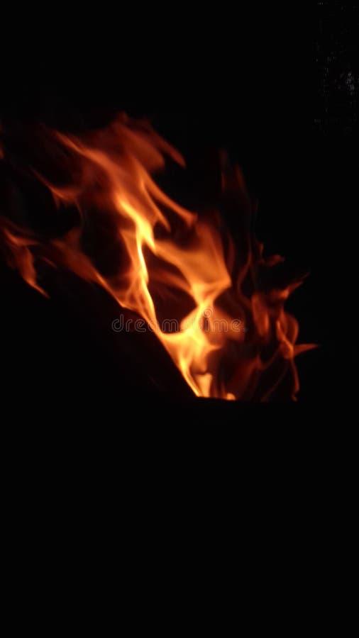 Cráneo dentro del fuego fotos de archivo libres de regalías