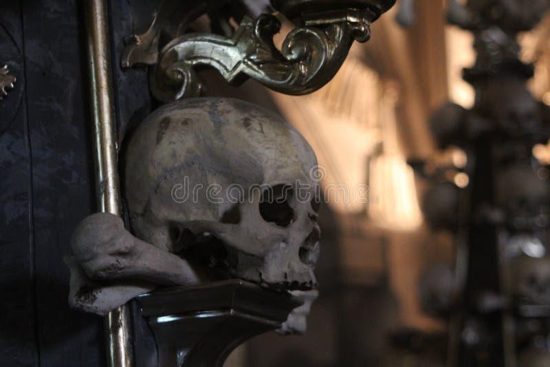 Cráneo en el hueso Churc de Kutna Hora foto de archivo libre de regalías