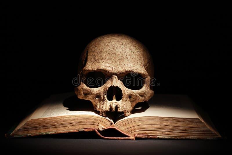 Cráneo en el libro foto de archivo