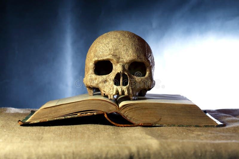 Cráneo en el libro fotografía de archivo libre de regalías