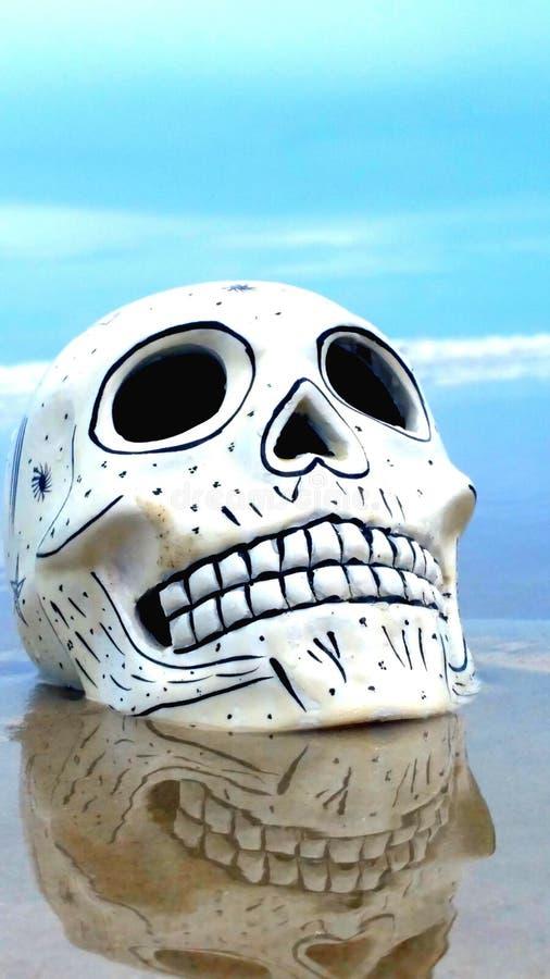 Cráneo en la playa imágenes de archivo libres de regalías