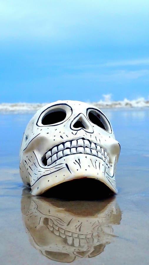 Cráneo en la playa imagen de archivo libre de regalías