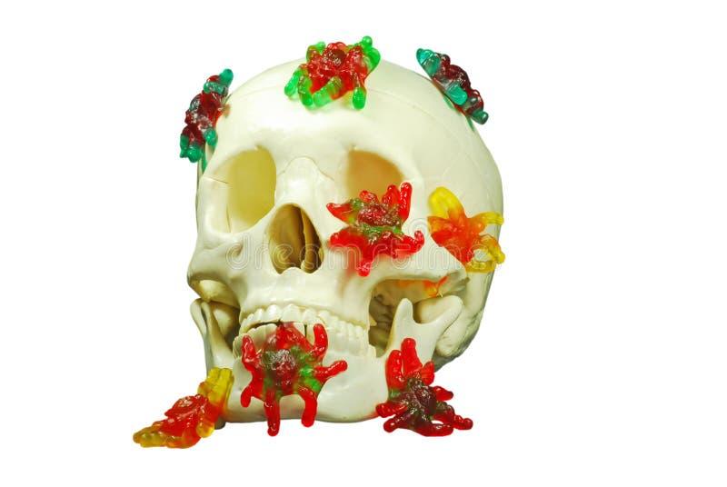 Cráneo espeluznante fotos de archivo