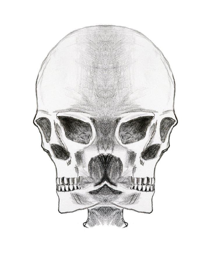 Cráneo extraño - lápiz en el papel ilustración del vector