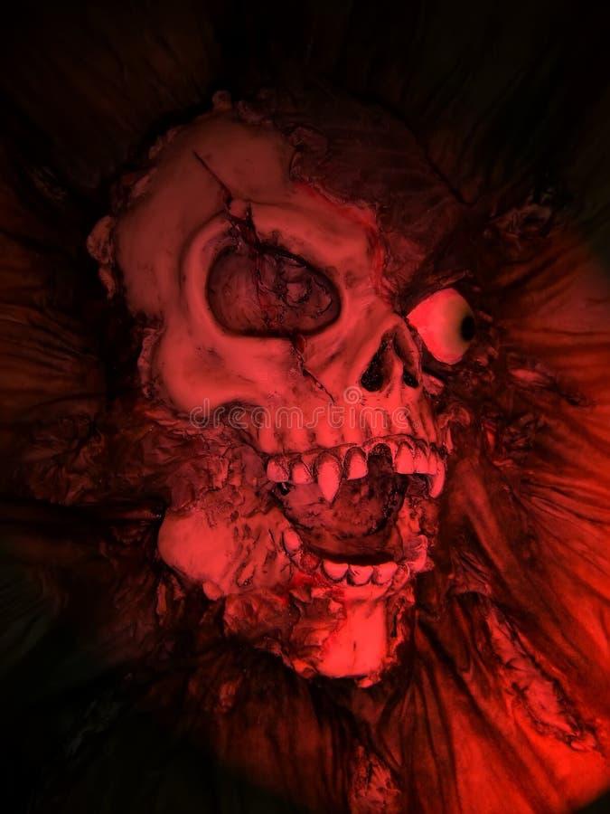 Cráneo falso ilustración del vector