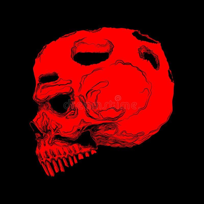 Cráneo humano anatómico correcto aislado Línea arte dibujada mano v fotos de archivo libres de regalías