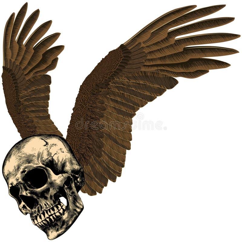 Cráneo humano con las alas del ` s del águila foto de archivo