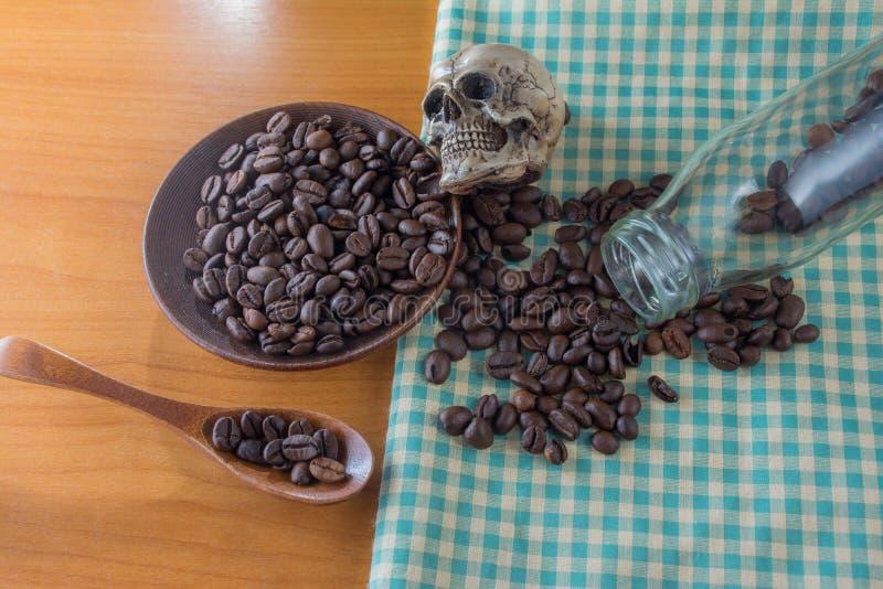 Cráneo humano con los granos de café fotos de archivo