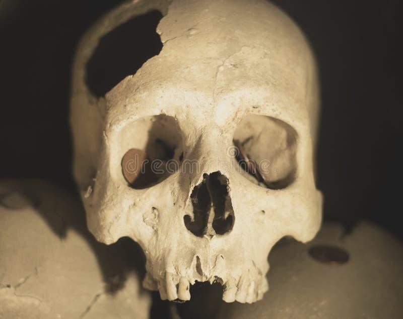 Cráneo humano espeluznante en Nápoles, Italia fotos de archivo libres de regalías