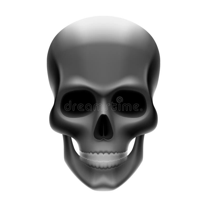 Cráneo. Ilustración del vector. libre illustration