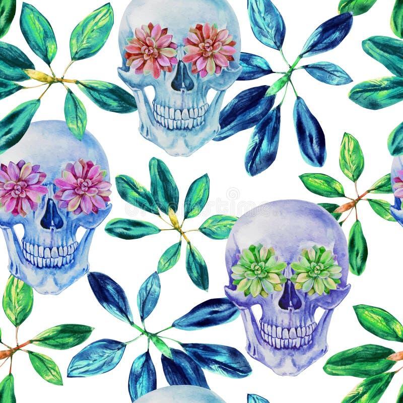 Cráneo inconsútil retro de la acuarela del modelo y plantas suculentas stock de ilustración