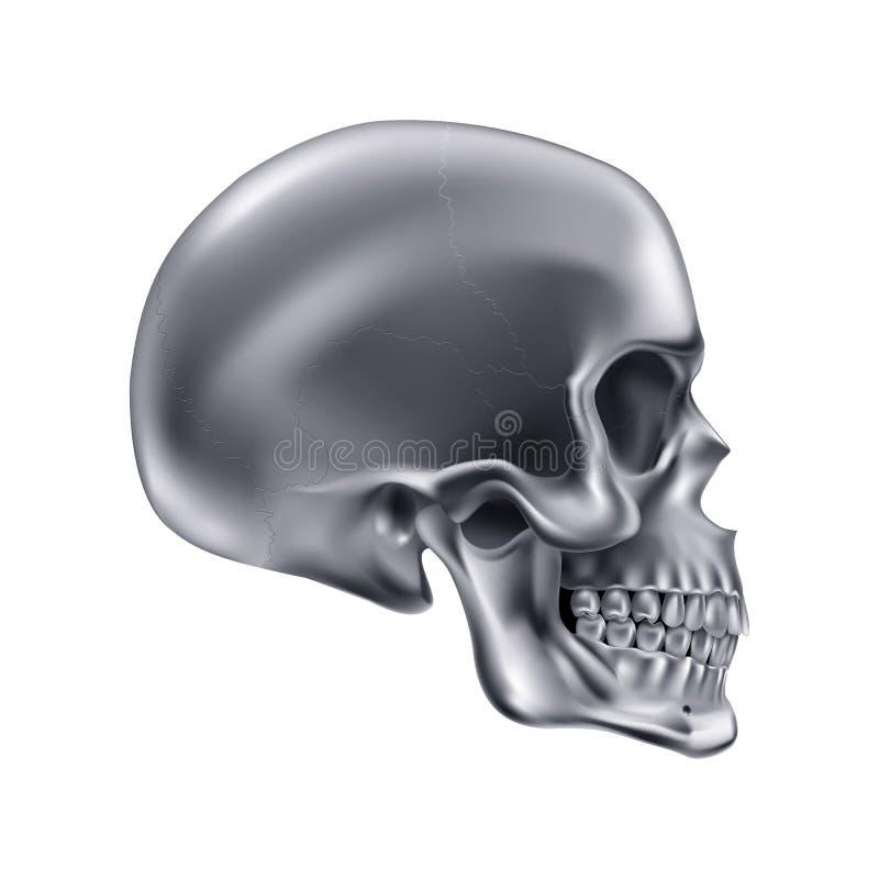 Cráneo metálico ilustración del vector