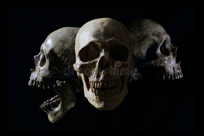 Cráneo principal en llama en fondo del negro oscuro fotos de archivo