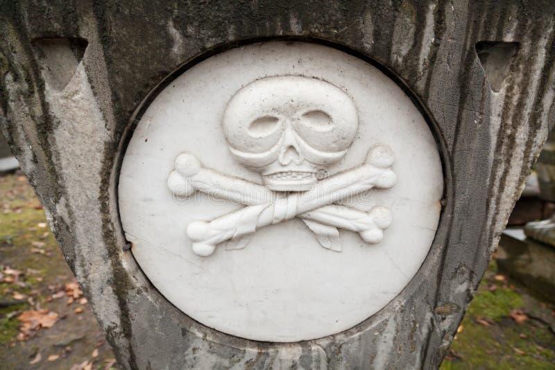Cráneo y crossbones imagen de archivo libre de regalías