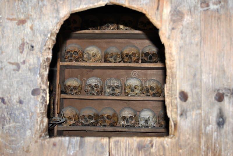 Cráneos fotografía de archivo