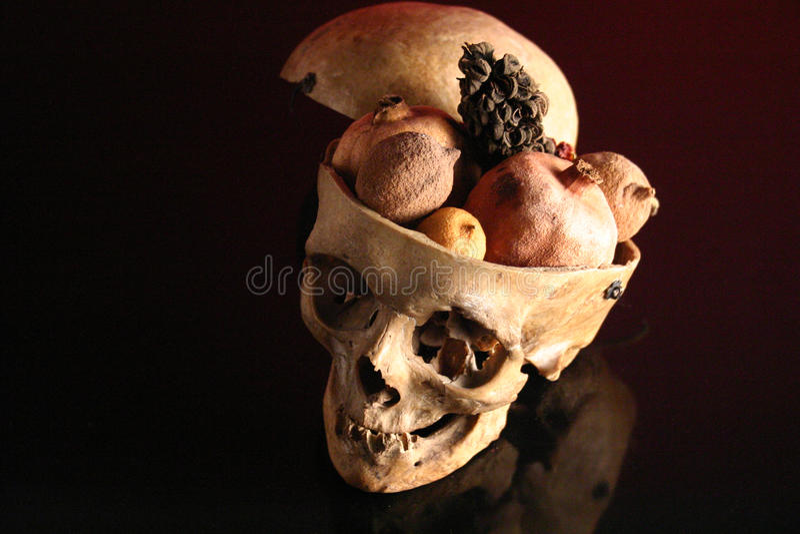 cráneos imágenes de archivo libres de regalías