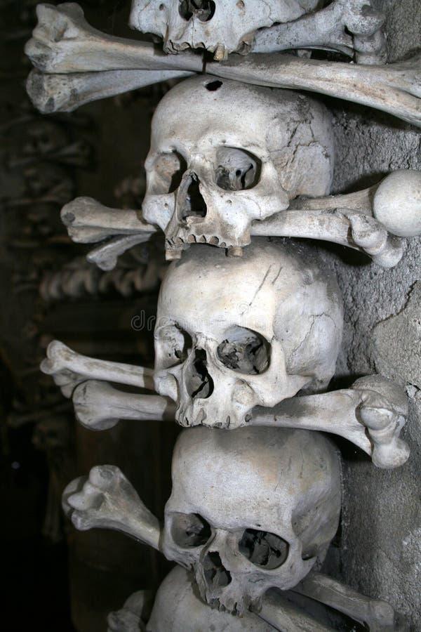 Cráneos en el osario imágenes de archivo libres de regalías