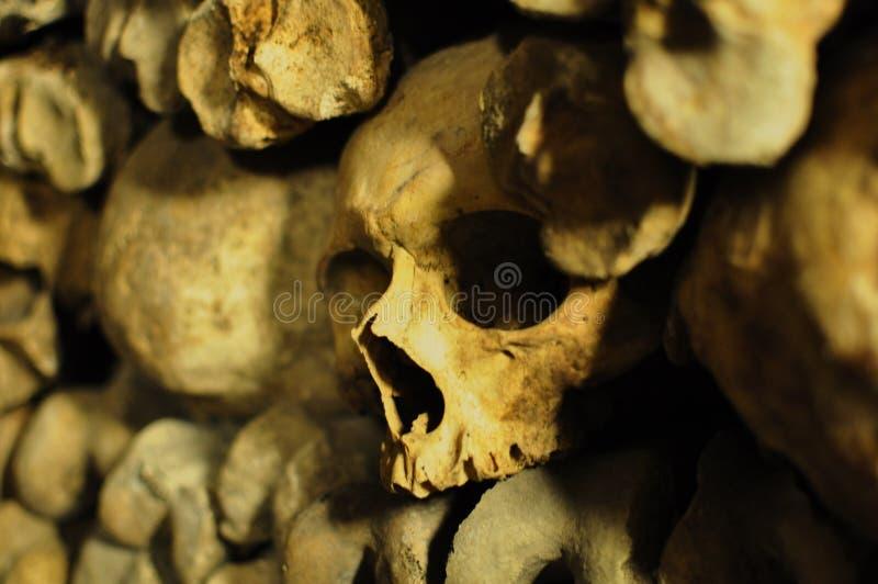 Cráneos humanos en las catacumbas de París, Francia imágenes de archivo libres de regalías
