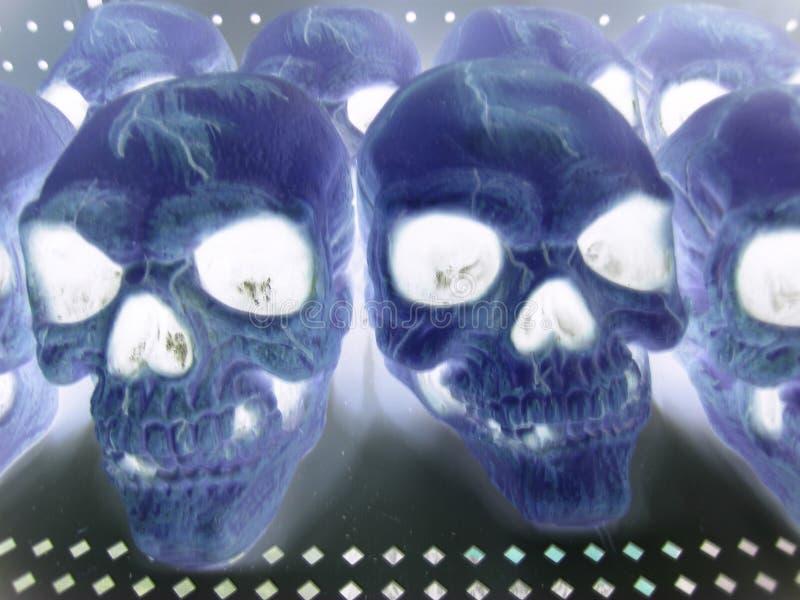 Cráneos, negativos foto de archivo