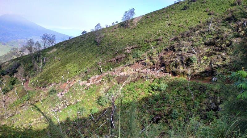 Cráter de Ijen del soporte, región de Bondowoso, Indonesia imagen de archivo