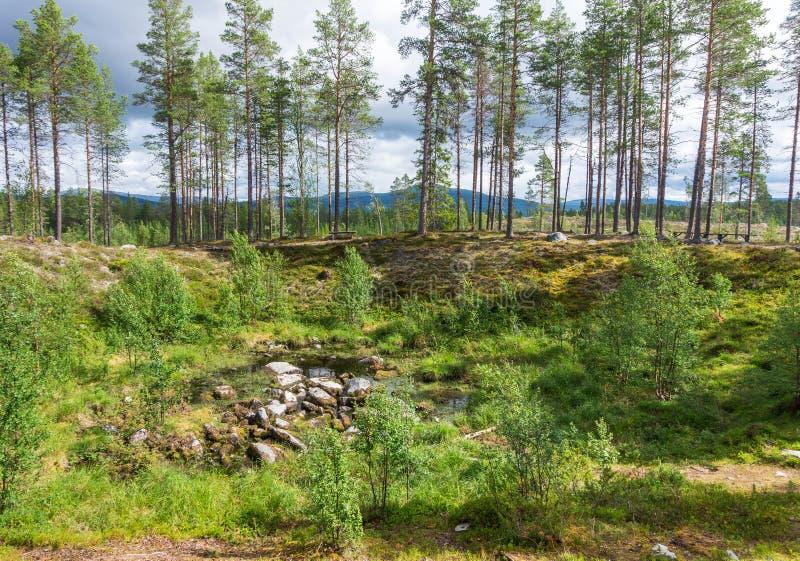 Cráter del meteorito cerca de Torbyggee, Suecia foto de archivo