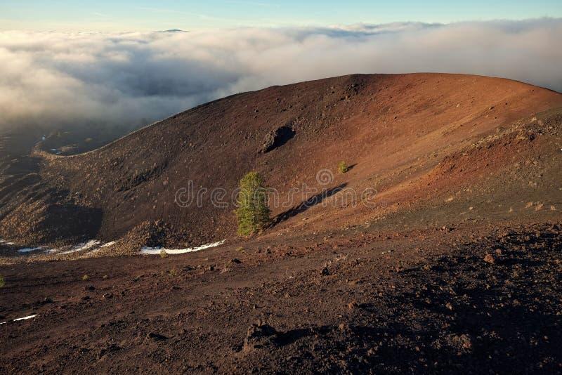 Cráter volcánico con el árbol de pino solo y nubes bajas en Etna Park foto de archivo libre de regalías