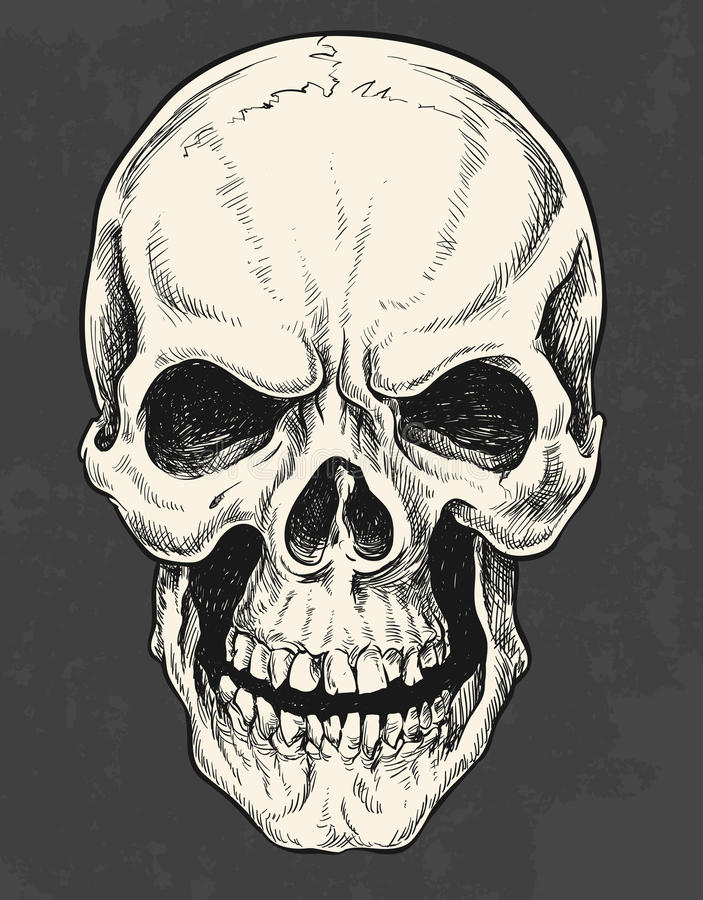 Crâne à l'encre tiré par la main illustration stock