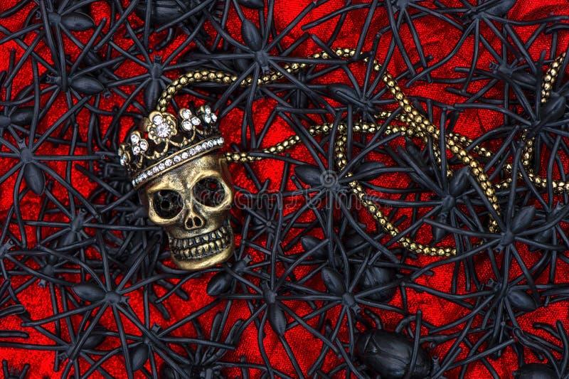 Crâne avec des beaucoup araignée noire. fond de Halloween photos libres de droits