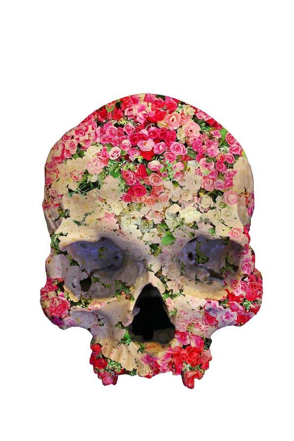 Crâne avec des roses dans le style de double exposition images stock