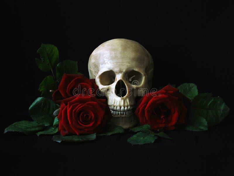 Crâne avec les roses rouges illustration libre de droits