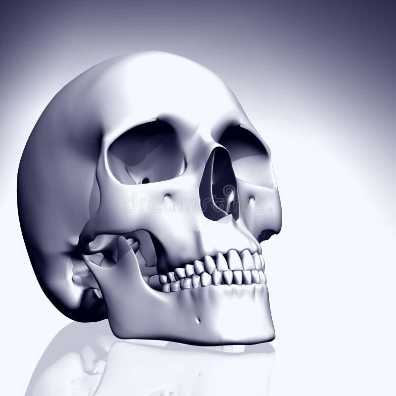 crâne coloré par 3D illustration stock