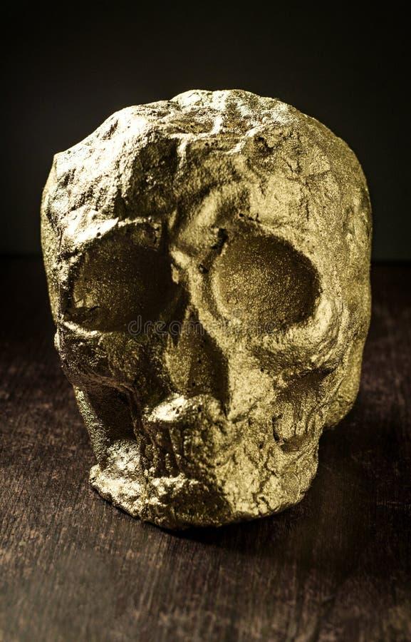Crâne d'or d'imbécile photos libres de droits
