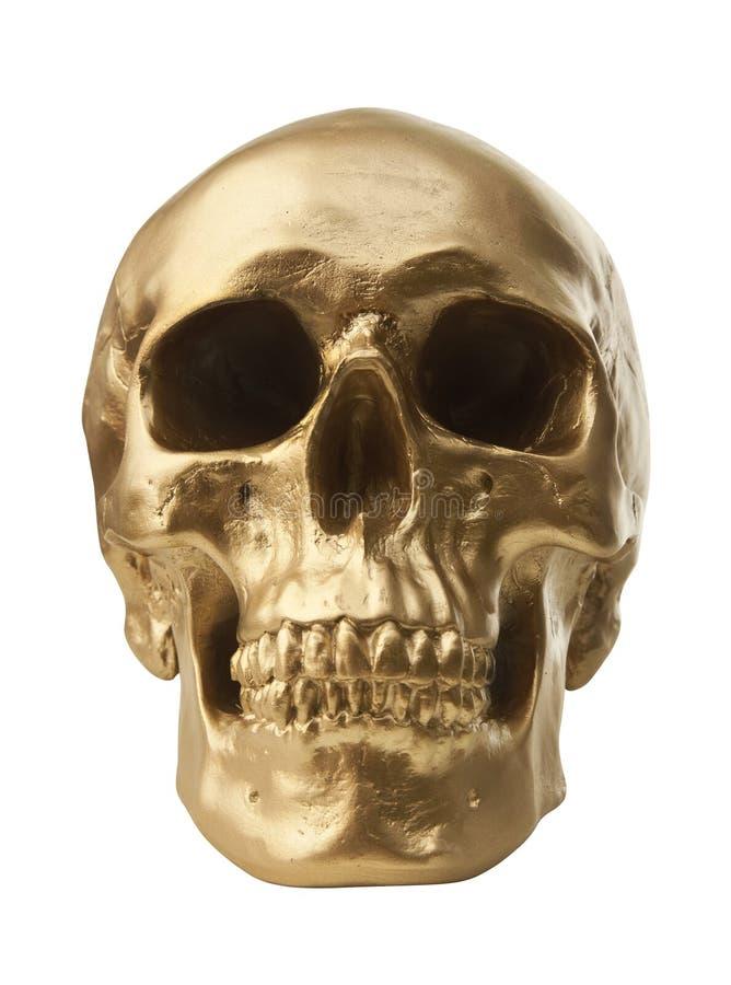 Crâne d'or sur le fond blanc images stock