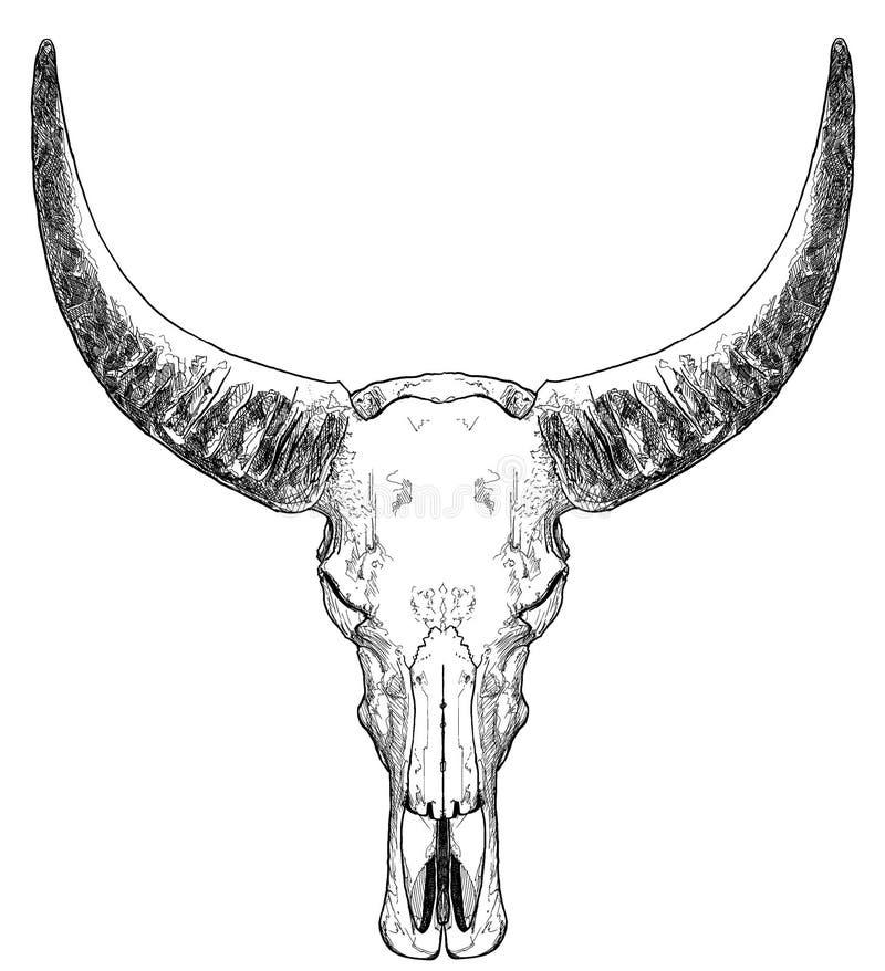 Crâne de Bull avec des klaxons illustration stock
