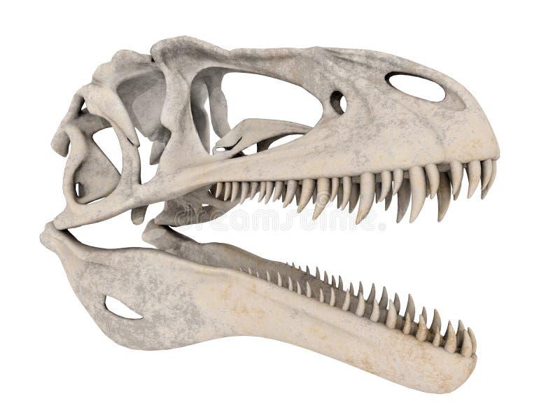 Crâne de dinosaure illustration libre de droits