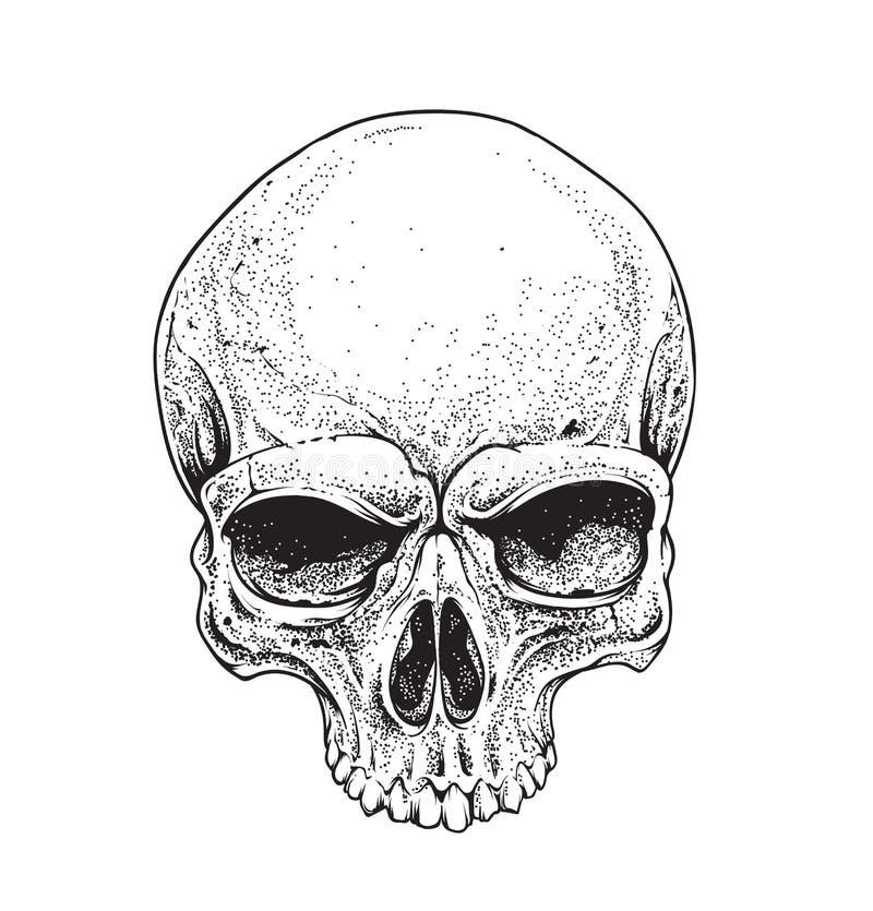 Crâne de Dotwork illustration stock