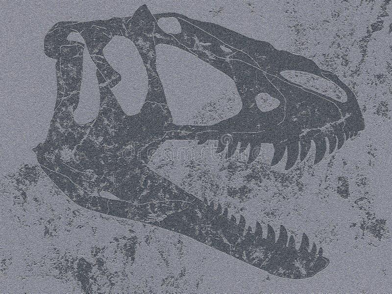 Crâne de tyrannosaure dans la roche plate images libres de droits