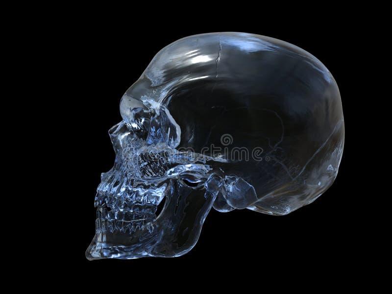 Crâne en cristal - vue de côté illustration de vecteur