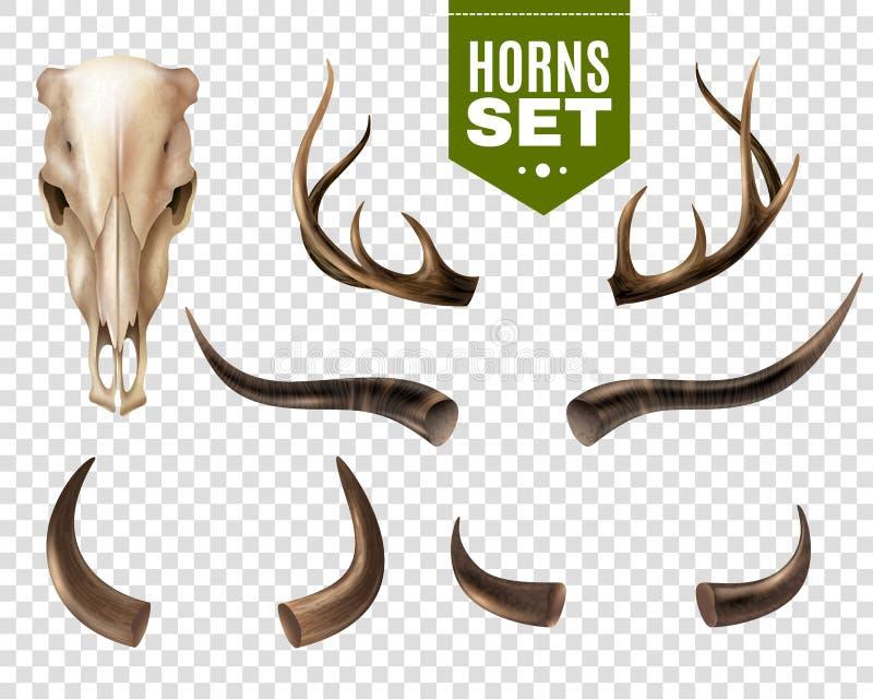 Crâne et klaxons de vache réglés illustration de vecteur