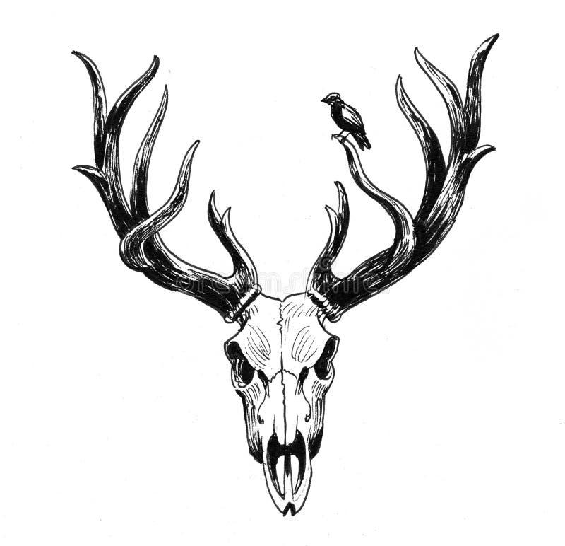 Crâne et oiseau de cerfs communs illustration de vecteur