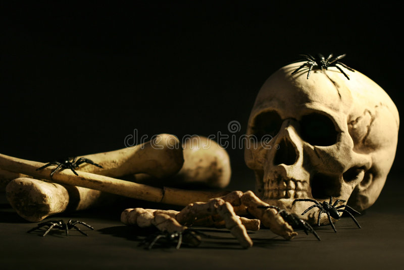 Crâne et os photographie stock