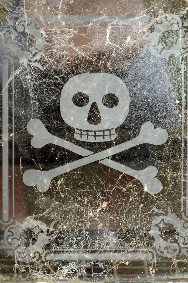 Crâne et os croisés illustration de vecteur