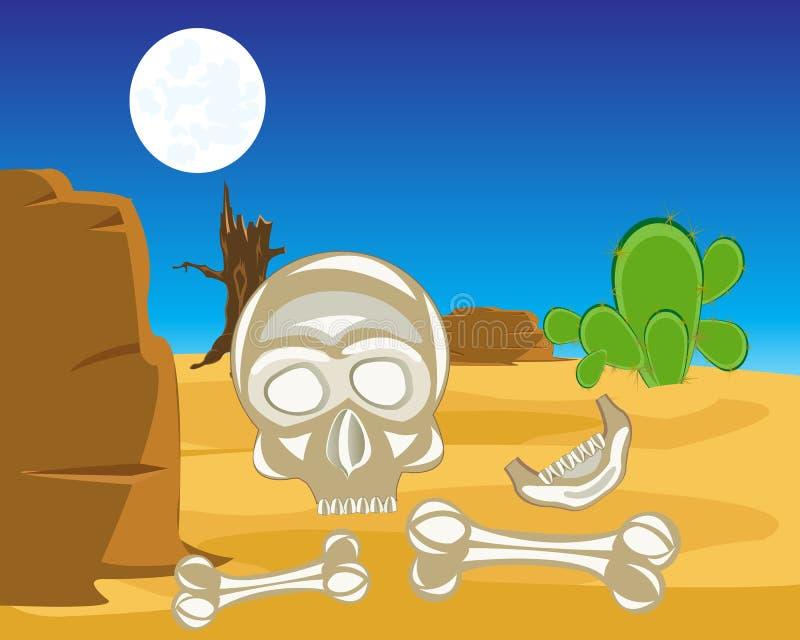Crâne et os croisés dans le désert illustration stock