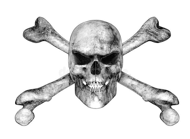 Crâne et os croisés - type de dessin au crayon illustration stock