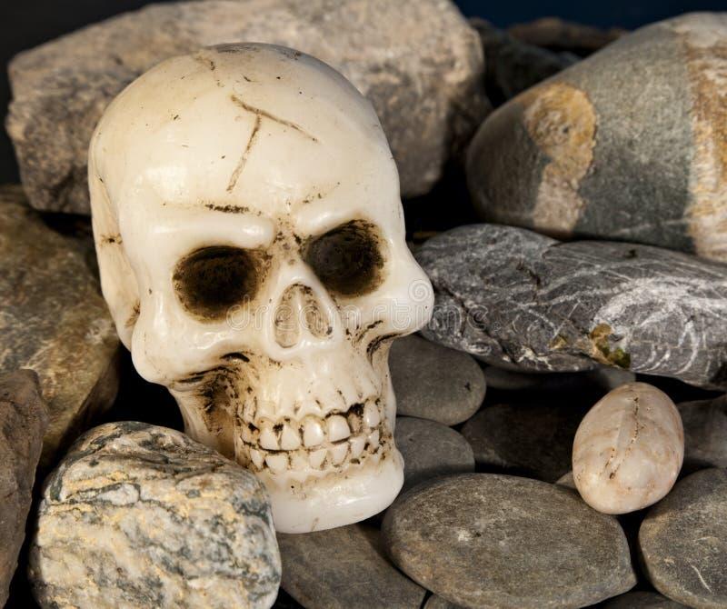 Crâne et roche image stock