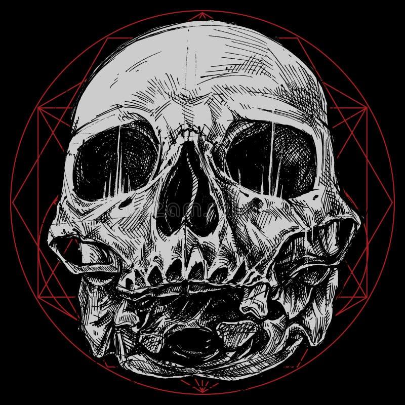 Crâne et symbole sacré de la géométrie illustration de vecteur
